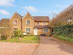 Thumbnail to rent in Goldings Lane, Waterford