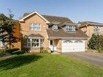 Thumbnail to rent in Reedmace Road, Bicester