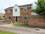 Thumbnail to rent in Wycliffe Grove, Werrington, Peterborough