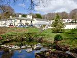 Thumbnail to rent in Honicombe Park, Callington