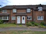 Thumbnail for sale in Oak Tree Close, Hertford Heath, Hertford