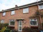 Thumbnail to rent in Bevis Close, Warsash, Southampton