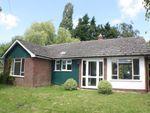 Thumbnail to rent in Wye Road, Boughton Lees, Ashford
