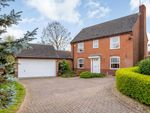 Thumbnail to rent in St. Lawrence Way, Stamford