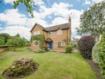 Thumbnail for sale in Gold Street, Podington, Wellingborough, Bedfordshire