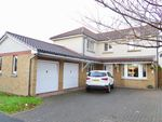 Thumbnail to rent in Appleby Grove, Bargeddie