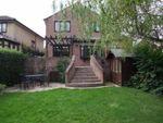 Thumbnail to rent in Errington Road, Walton, Chesterfield