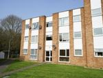 Thumbnail to rent in Trapstyle Road, Ware