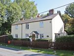Thumbnail to rent in The Street, Bradwell Village
