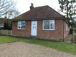 Thumbnail to rent in Thurston Road, Bury St Edmunds