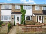 Thumbnail to rent in Ranworth Close, Belton, Great Yarmouth
