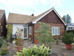 Thumbnail for sale in Mansfield Hill, North Chingford, London