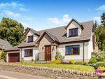 Thumbnail to rent in Bearehill Loan, Brechin
