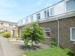 Thumbnail for sale in Lobelia Close, Springfield, Chelmsford