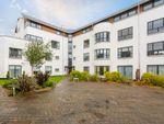 Thumbnail to rent in Brighouse Park Cross, Edinburgh