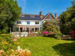 Thumbnail for sale in St. Lawrence Avenue, Bidborough, Tunbridge Wells, Kent