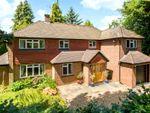 Thumbnail for sale in Mellersh Hill Road, Wonersh, Guildford, Surrey