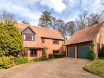 Thumbnail for sale in Beechwood Park, Boxmoor, Hemel Hempstead