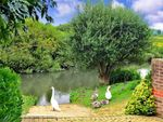 Thumbnail to rent in Riverside Court, Pulborough, West Sussex