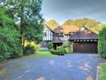 Thumbnail for sale in First Avenue, Charmandean, Worthing, West Sussex