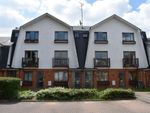 Thumbnail to rent in Braeside, Binfield, Bracknell, Berkshire