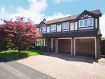 Thumbnail for sale in Hollington Way, Shirley, Solihull