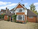Thumbnail for sale in St. Nicolas Avenue, Cranleigh