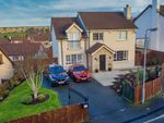 Thumbnail for sale in Bramblewood, Bessbrook, Newry