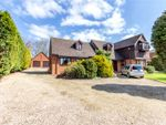 Thumbnail to rent in The Village, Clifton Upon Teme