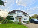 Thumbnail to rent in Blighton Lane, The Sands, Farnham