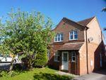 Thumbnail for sale in Grange Close, Romanby, Northallerton