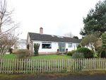 Thumbnail for sale in Solway View, Kirkbampton, Carlisle, Cumbria