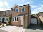 Thumbnail to rent in Spring Lane, Bexhill-On-Sea