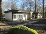 Thumbnail to rent in John Fowler Holiday Park, Lelant, St.Ives, Cornwall