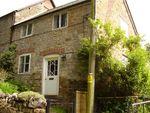 Thumbnail to rent in Stoke Abbott, Beaminster, Dorset