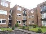 Thumbnail to rent in Kensington Grove, Denton, Manchester