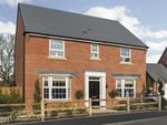 "Thumbnail to rent in ""Bradgate"" at Station Road, Langford, Biggleswade"