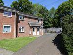 Thumbnail to rent in Birch Grove, Boyatt Wood, Eastleigh