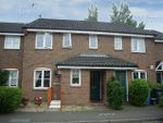 Thumbnail to rent in Horsford Street, Norwich