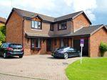 Thumbnail to rent in Mclaren Grove, East Kilbride, Glasgow