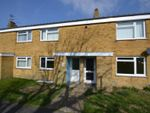 Thumbnail to rent in Mulberry Close, Eastbourne