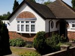 Thumbnail for sale in Strangeways, Watford, Hertfordshire