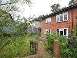 Thumbnail to rent in Rosebank, Anerley