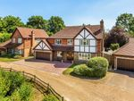 Thumbnail to rent in Harwood Park, Redhill, Surrey