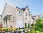 "Thumbnail to rent in ""Fenton"" at Barochan Road, Houston, Johnstone"