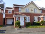 Thumbnail to rent in Bluebell Croft, Northfield