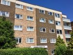 Thumbnail to rent in Holland Road, Hove