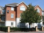 Thumbnail to rent in Hayling Close, Gosport