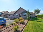 Thumbnail to rent in Craigo, Montrose