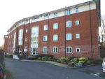 Thumbnail to rent in North Drive, Hatfield